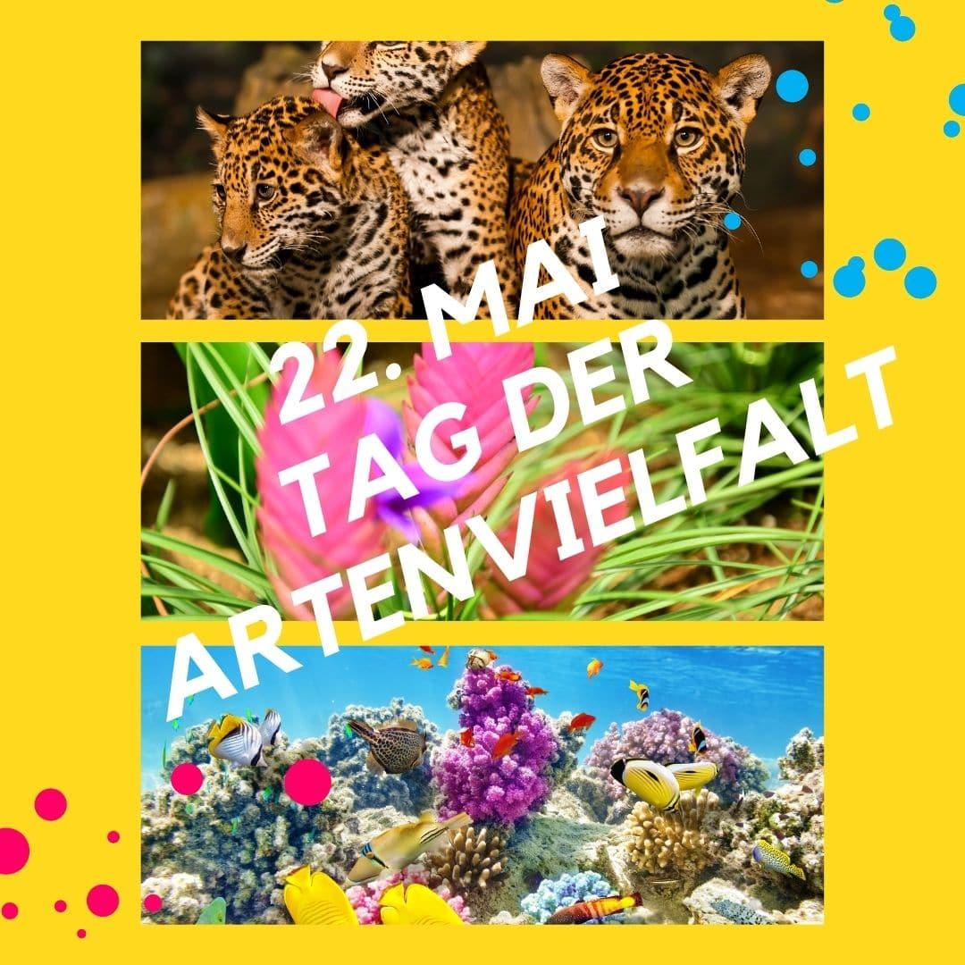 Challenges 3 Tag der Artenvielfalt