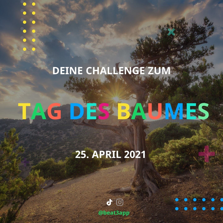 Challenges 6 Tag des Baumes